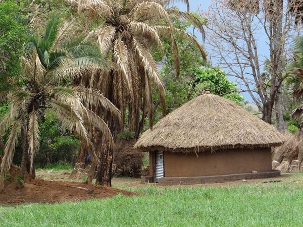 2013-uganda (4)